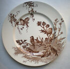 Old French Art Nouveau Majolica Plate signed Creil Montereau: the Goldfinches