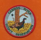 SCOUT BSA CANNON RIVER RESERVATION 1989 TURKEY INDIANHEAD COUNCIL CAMP MN PATCH