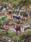 DEER IN WOODS BUCK DOE NATURE WILDLIFE SCENIC #2517 COTTON QUILT TIMELESS FABRIC