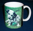 Barbara Augello 1995 XPRES ~DALMATIONS~ Dog Lovers Info. Coffee MUG