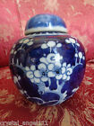 ANTIQUE 19thc   HAND PAINTED  CHINESE  PRUNUS BLOSSOM  GINGER JAR  VASE