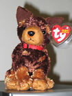Ty Beanie Baby ~ AMIGO the Dog ~ Internet Exclusive ~ MINT with MINT TAGS