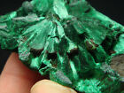 45g Graceful Green MALACHITE Crystal Mineral Specimen