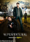 2016 Cryptozoic Supernatural Seasons 4-6 Trading Cards - Review Added 29