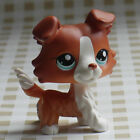 in hand red-brown Collie dog LITTLEST PET SHOP LPS mini Action Figures #1542