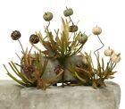 ZiaBella Decorative Autumn Sprays with Faux Pumpkins Faux Grass and Leaves