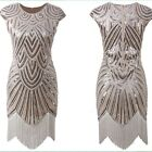 1920s Vintage Flapper Dress Gatsby Charleston Party Sequin Fringe Costume Dress