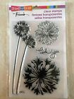 Stampendous Clear Acrylic Stamp Set Agapanthus Thanks Flower SSC1111 NEW