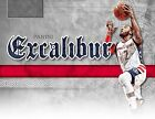 2016-17 Panini Excalibur Basketball NBA Trading Cards 88ct. Blaster Box CASE