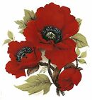 Red Poppy Flower Select A Size Waterslide Ceramic Decals Bx