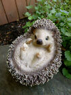 Hedgehog All Curled Up Figurine PetPals Resin Statue Ornament New Animal 5 in