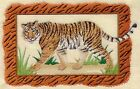 Embroidered Fleece Jacket Bengal Tiger A4505 Sizes S XXL