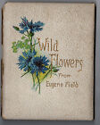 Victorian Poem Book Wild Flowers From Eugene Field 36 Pages Verses Sketches