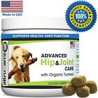 Glucosamine Chondroitin MSM For Dogs Hip  JointHelp Relieve Arthritis  Pain