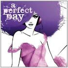 A Perfect Day Various Artists CD