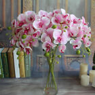 Fake Artificial Butterfly Orchid Silk Flower Wedding Party Phalaenopsis Bouquet