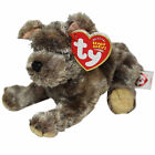Ty Beanie Baby Cutesy - MWMT (the Dog)