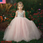 Flower Girl Kids Lace Tutu Dress Princess Party Wedding Bridesmaid Tulle Gown