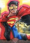 2013 Cryptozoic Superman: The Legend Trading Cards 14