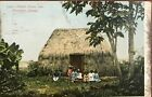 1908 Post Card Of A Native Grass Hut Honolulu Hawaii