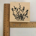 Stampendous Rubber Stamp Wood Mount Branch Songster 3 x 3