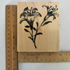 Penny Black Rubber Stamp Wood Mount Brush Lilies 4 x 3 1 2
