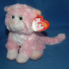 Ty Beanie Baby Curtsy - MWMT (the Cat)