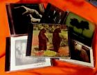 OVER THE RHiNE 6 cd lot BESiDES Til We Have Face PATiENCE Good Dog Bad Dog OHiO