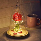 Beauty And The Beast Light up Enchanted Rose Glass Dome Birthday Gifts For Mom