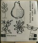 INFINITE GOODNESS  BRAND NEW UNMOUNTED STAMPIN UP  SET OF 6 STAMPS