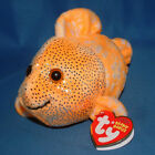 Ty Beanie Baby Reefs - MWMT (Fish Orange Clown Fish 2006)