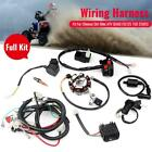 Full Electrical Wiring Harness Kit Fit For Chinese Dirt Bike ATV CG125 150 250CC