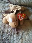 Beanie Baby Collection Derby