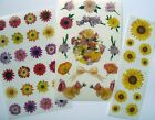 Mrs Grossmans Special Flower Sticker Lot Floral Stickers Sunflowers FREE SHIP