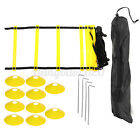 12 Rung Agility Speed Training 15 ft Fixed Rung Speed Ladder with 10 Disc Cones