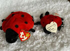 1993 1995 Lucky The Lady Bug Ty Beanie Baby Collectible With Tag Errors