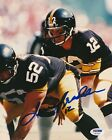 Terry Bradshaw Cards, Rookie Cards and Autographed Memorabilia Guide 71