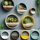 Round Hanging Wall Plant Succulent Flower Glass Pot Vases for Home Room Decor