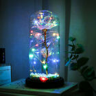 Crystal Galaxy Rose In The Glass Dome 20 Led Lights Gift For Girlfriend Mom Wife