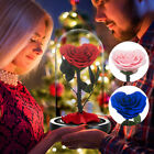 Heart Shaped Preserved Rose Beauty and The Beast Eternal In Glass Christams Gift