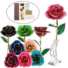 24K Gold Rose Dipped Flower Real Long Stem Valentines Day Lover Gift Mother Love