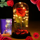 Beauty And The Beast Enchanted Rose In Glass Dome LED Light Valentines Day Gift