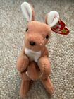 Rare-Pouch-Ty Beanie baby-Retired-Style 4161-With Tags-1996-PVC-good condition