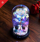 Eternal Sky Rose Flower In Glass Dome LED Light Valentines Day Gift Decor