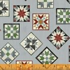 Thistle Hill Barn Quilt Blocks Cotton Fabric By Windham