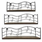 Floating Shelves Wall Mounted Storage Set of 3 Wall Hanging Display Shelf with M