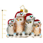 Christopher Radko NEW ITS OWL IN THE FAMILY Christmas Ornament 1020506