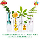 Colored Glass Bud Vase Set of 5 Double Walled Glass Vase 2012x 1154x 465 in