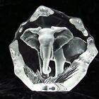 Mats Jonasson Signed Etched Art Glass Lead Crystal Elephant in Grass 6