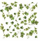 Evergreen Ivy 38 Wall Stickers Room Decor Decals Vines Leaves Green Border Leaf